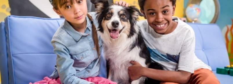 Série de TV ensina crianças a cuidar de filhotes de animais de estimação