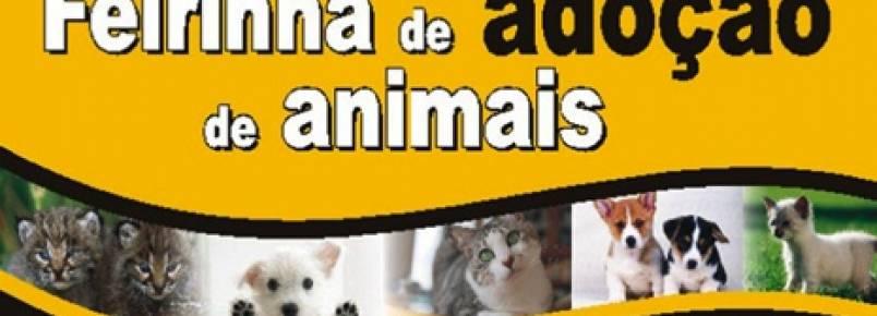 Feirinha de Adoção de Animais tem nova data e local