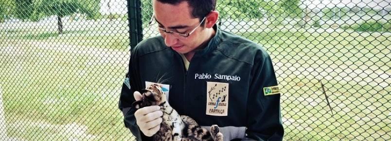 Animais do São Francisco voltam à vida selvagem