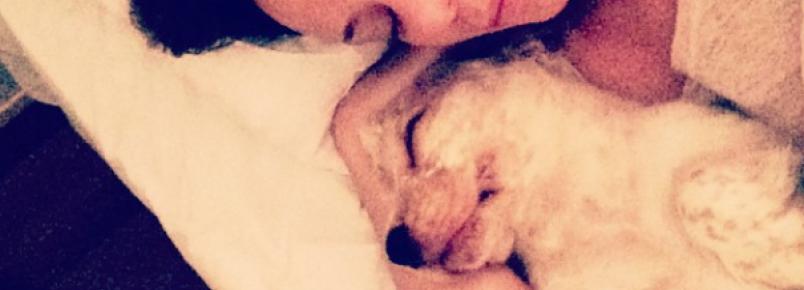 Vanessa Gerbelli e seu cachorro Victor