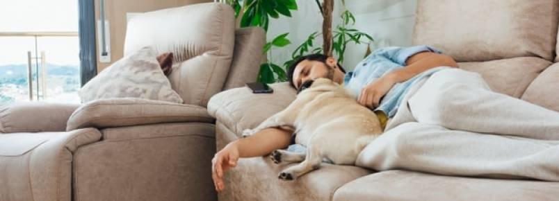 Cachorro seguindo o dono – Por que eles fazem isso?