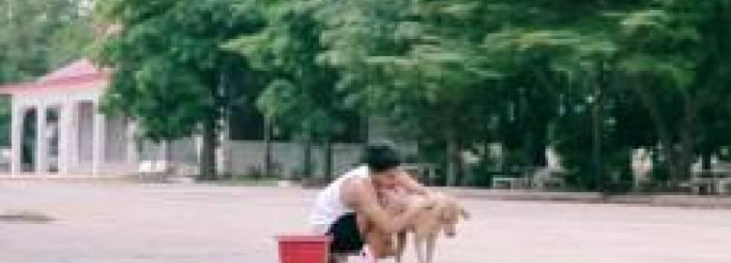 Tailandês dá banhos em cães de rua por pura bondade