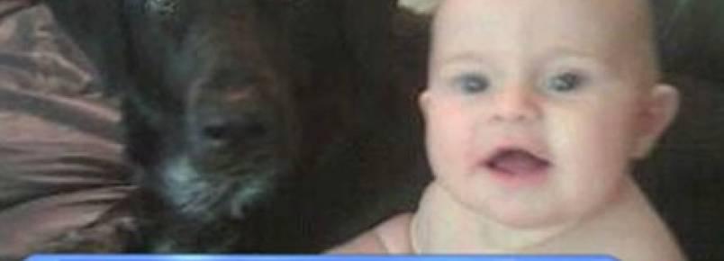 Cão salva criança de babá abusiva e violenta