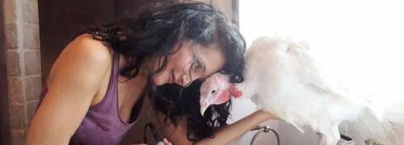 Ativista resgata perus que foram convidados de honra em seu Dia de Ação de Graças
