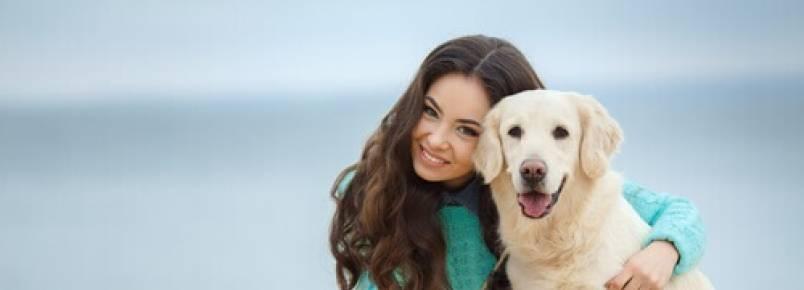 Uma cadela de rua salvou a vida de uma mulher e ganhou um lar