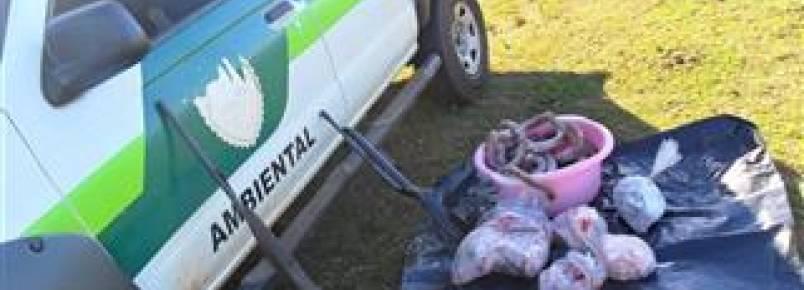 Homem é preso com armas e 21kg de carne de capivara em Loanda