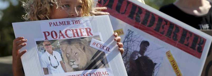 """Deputado cria projeto-lei """"Cecil"""" para travar caça a animais ameaçados"""