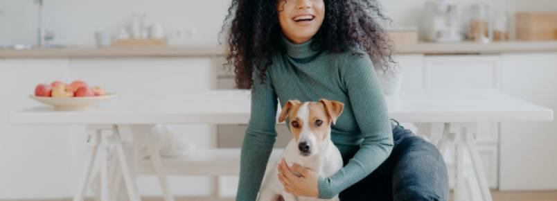 Como montar uma creche para cachorros – Passo a passo