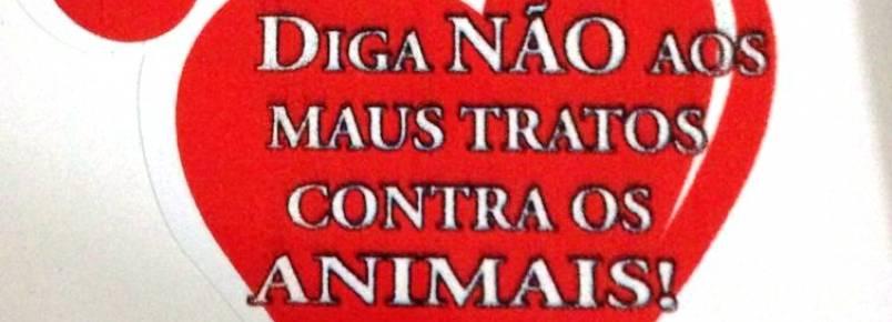 Irmandade das Patinhas lança adesivo contra maus tratos em P. Porã