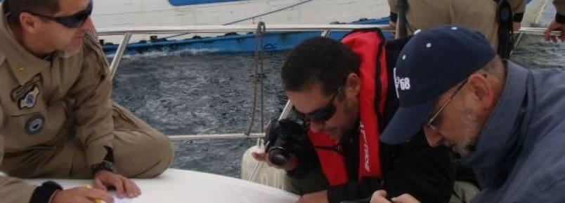 ICMBio inicia ações para proteção da baleia franca