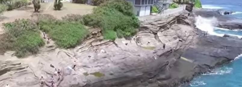 Onda gigante surpreende cãozinho, mas ele sai ileso
