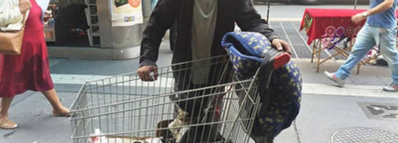Morador de rua vende carroça para cuidar de ninhada de cachorrinhos