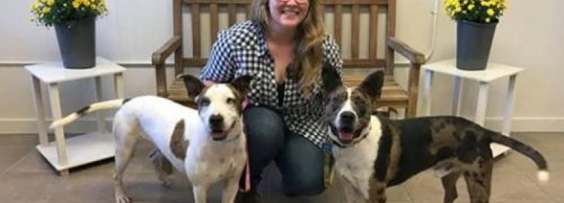 Mulher dirige para outro Estado para adotar cãozinho de abrigo