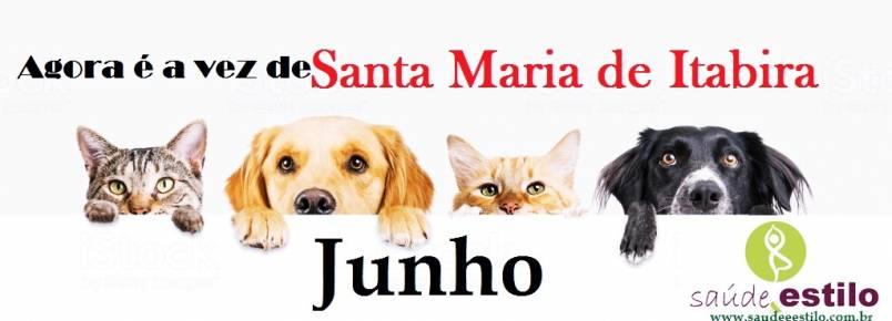 Agora é a vez de Santa Maria de Itabira ter o maior evento  dos Apaixonados por Cães