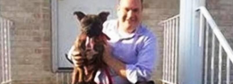 Político adota pitbull durante campanha eleitoral e depois o abandona