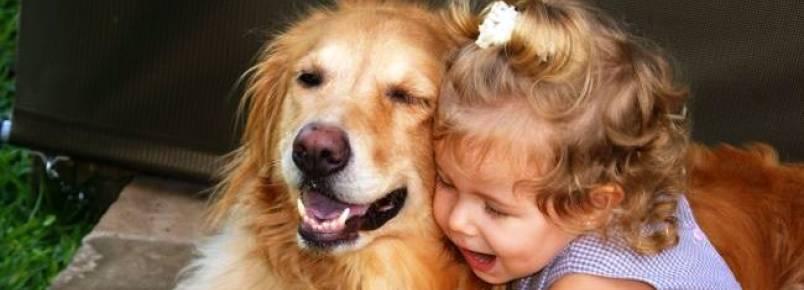 Uma amizade que ensina o respeito aos animais