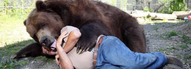 Casal dedica sua vida para cuidar de ursos resgatados