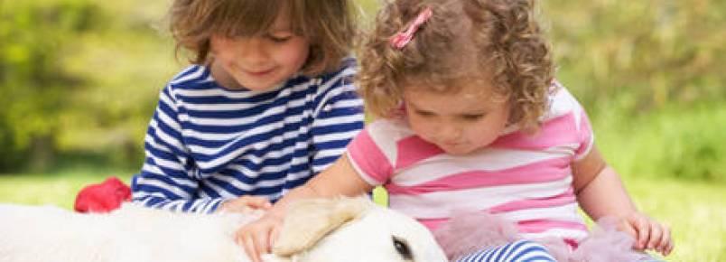 Crianças que crescem com cães têm menos risco de desenvolverem asma, diz estudo