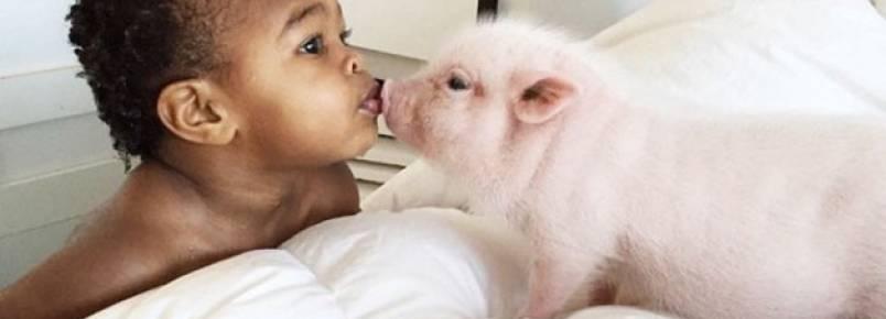Garotinha e sua porca de estimação fazem sucesso na internet