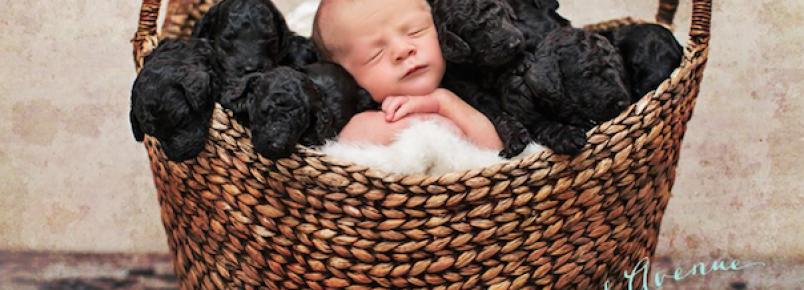 Mulher e sua cachorra dão à luz no mesmo dia