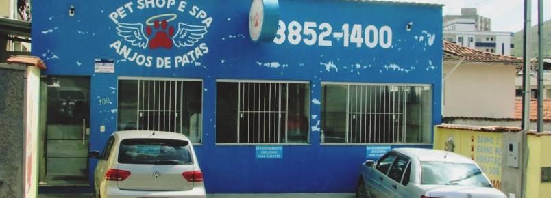 Anjos de Patas confirma participação no 5°Encontro dos Apaixonados por Cães de Monlevade