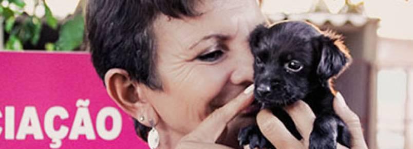 Pela internet, ONG que cuida de cãezinhos abandonados consegue levantar recursos
