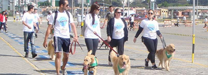 1º Pet Run – Shopping Eldorado reúne atletas caninos e seus donos em um domingo repleto de atividades