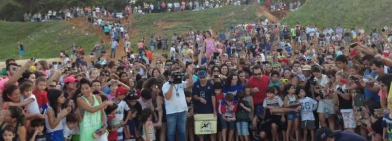 Libertação de tartarugas do Tamar reuniu público recorde