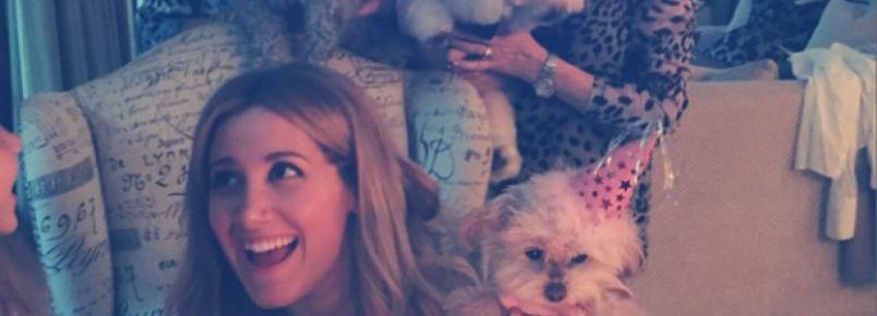 Celebridades comemoram o aniversário de seus cães