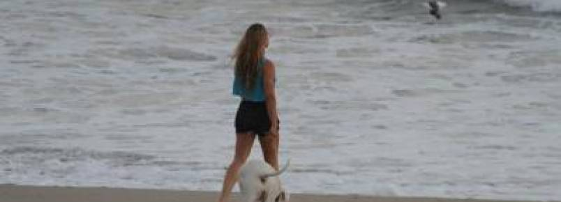 Após derrota, Ronda Rousey se isola e só conversa com seu cachorro