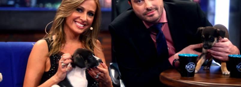 Luisa Mell levou cãezinhos ao palco do The Noite