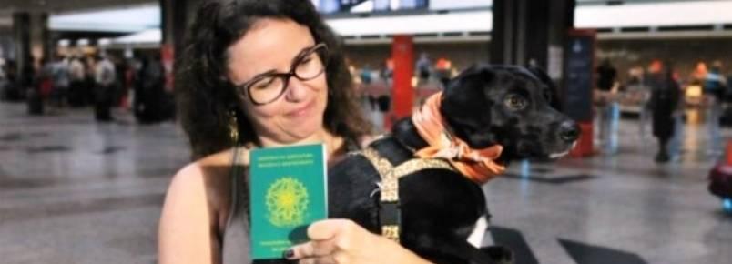 Animais de estimação tiram passaporte para viajar pelo Mercosul