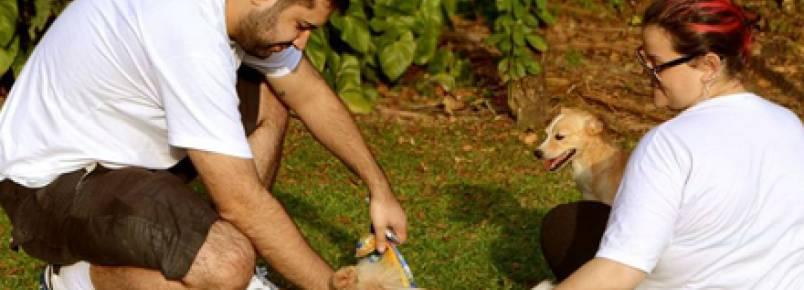 ONGs realizam passeio comunitário e conseguem lar para 4 cães
