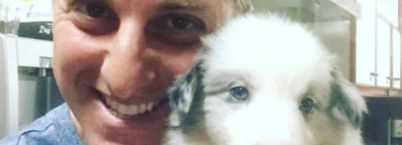 Conheça a nova cachorra de Angélica e Luciano Huck
