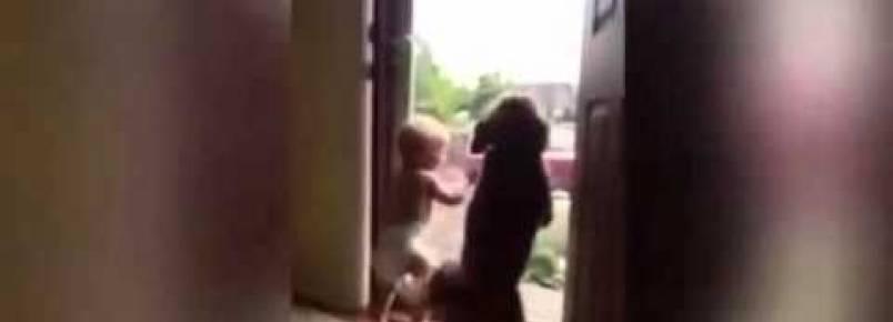 Bebê e cachorrinhos felizes com a chegada do papai