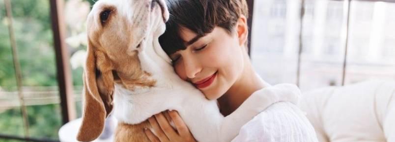 Pets causam efeitos positivos na vida dos donos, revela pesquisa