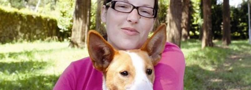 Xico, o cão que ajuda outros no Facebook