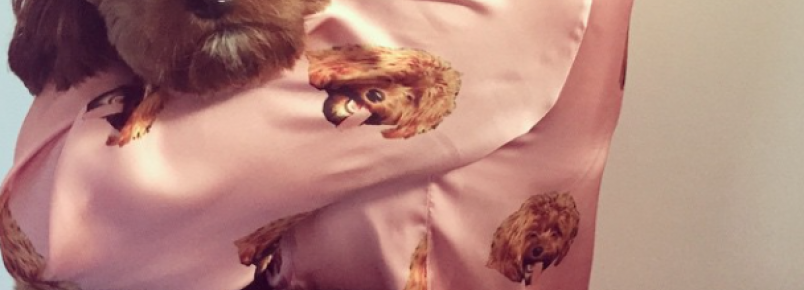 Katy Perry usa pijama estampado com foto do seu cachorro