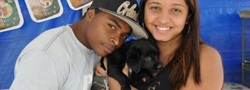 Porto Feliz realiza nova Feira de Adoção de Cães