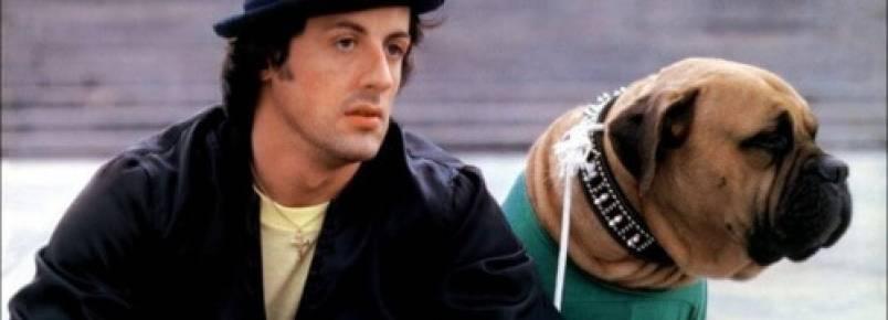 A triste história de Sylvester Stallone e seu cão Butkus