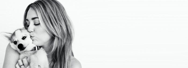 Miley anuncia álbum de covers para ajudar instituição de animais