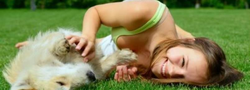 Cachorros podem adquirir a personalidade de seus tutores