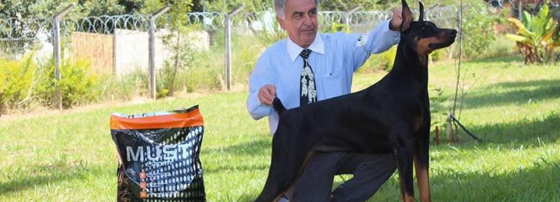 Lindos cães do Milton Cheib brilham em evento neste final de semana em BH