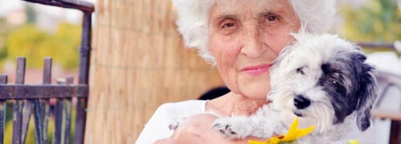 O melhor animal de estimação para as pessoas idosas