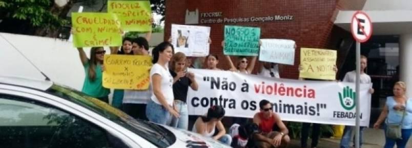 Justiça proíbe Fiocruz de realizar testes em animais em Salvador