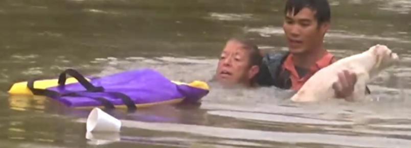 Homem salva mulher e cachorro de carro que estava afundando em enchente