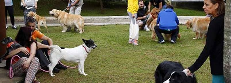 São Caetano ganhará novo Canil Municipal e dois espaços caninos