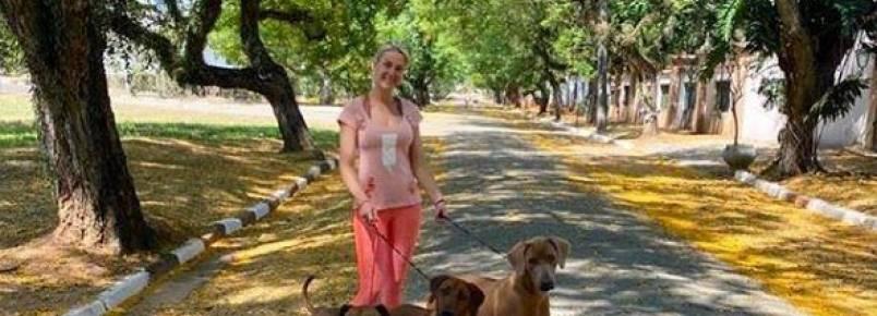 Malhação de Ana Hickmann e os seus 19 pets