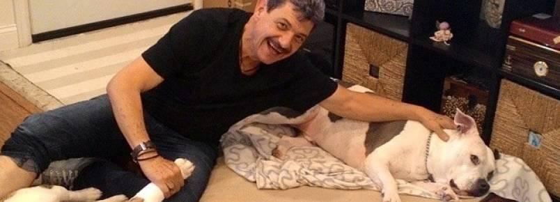 Empresário se diverte com os cães de sua filha