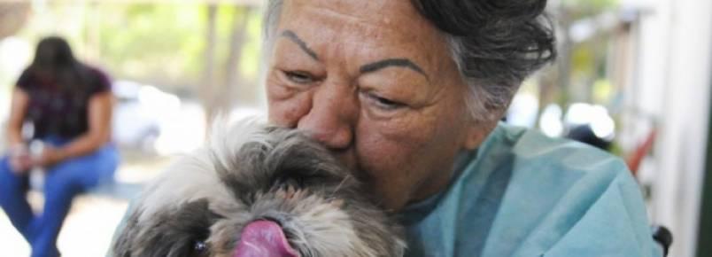 Reencontro de paciente internada com cachorro emociona família